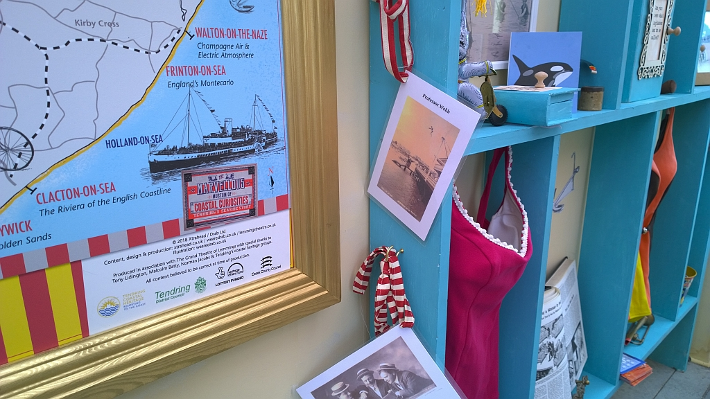 Display in the Marvellous Museum of Coastal Curiosities